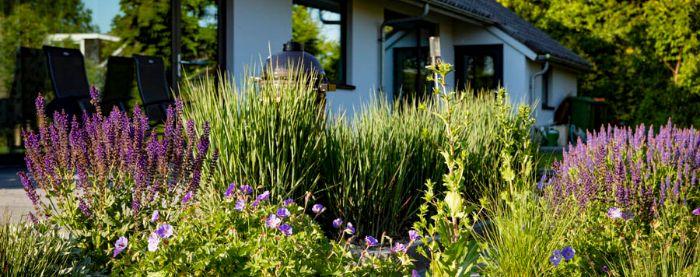 Moderne-tuin-Bosman-Tuinadvies